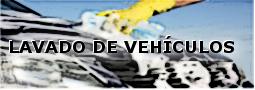 lavado de vehiculos